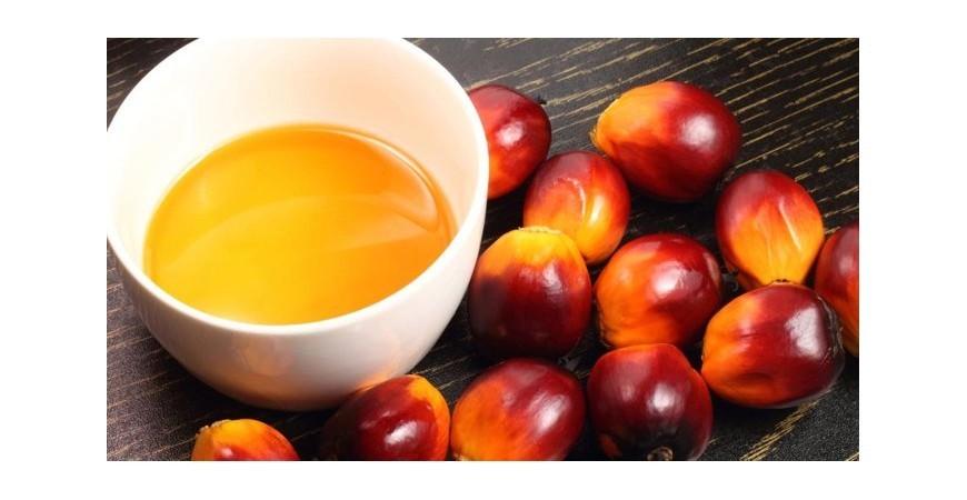 Preferiamo dire no all'olio di palma